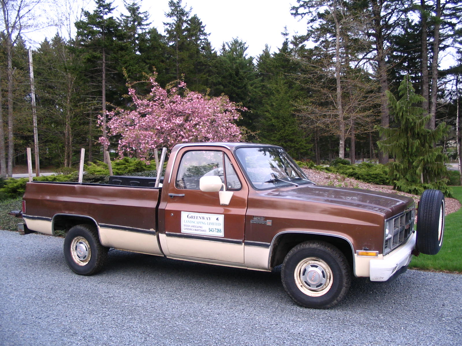 Our Favourite - A Classic 1981 Chev 1/2 Ton