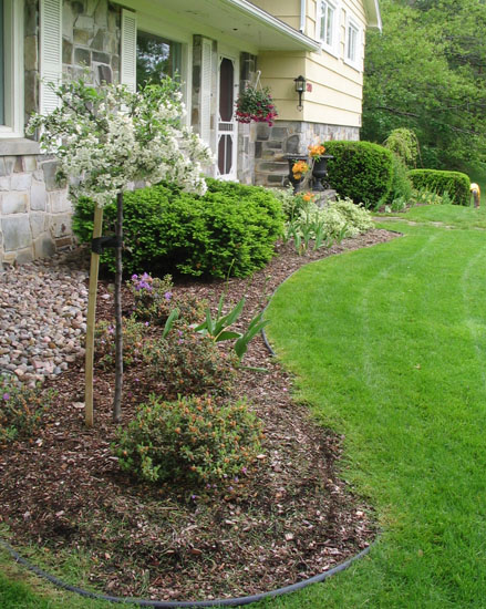 Garden Maintenance & Mowing
