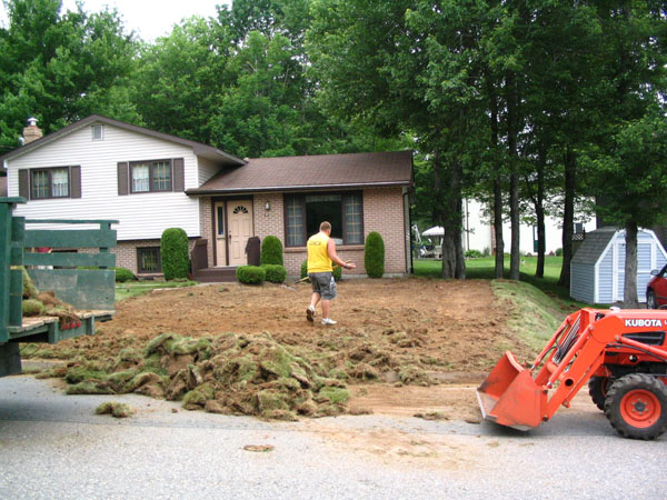 Lawn Rennovation Before