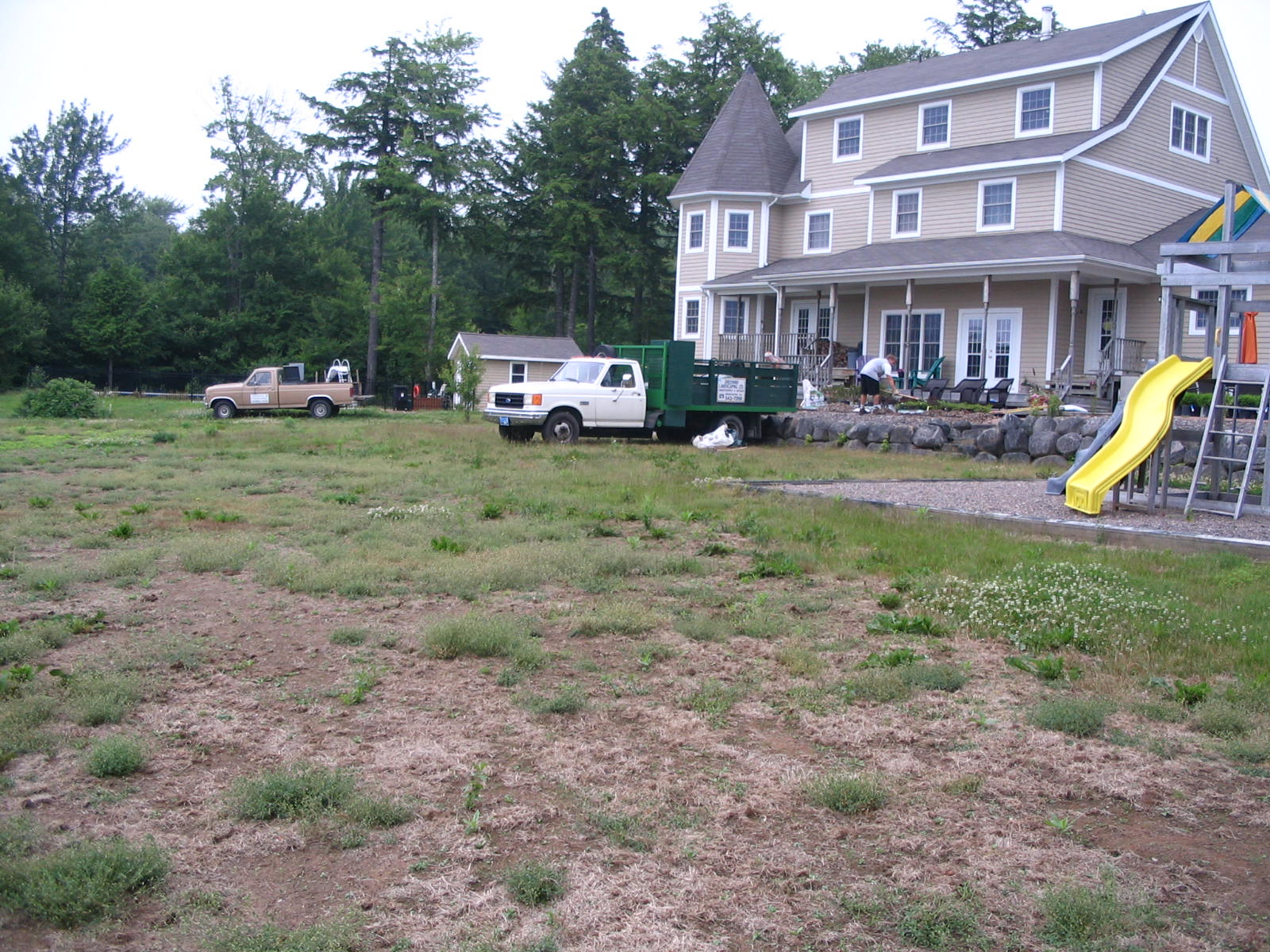 Existing Lawn Before